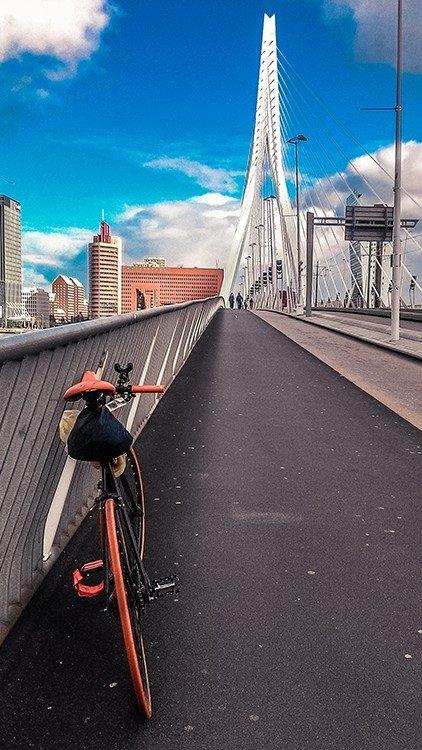 erasmusbrug ponte bicicletta ciclabile viaggiare in bici olanda scatto fisso