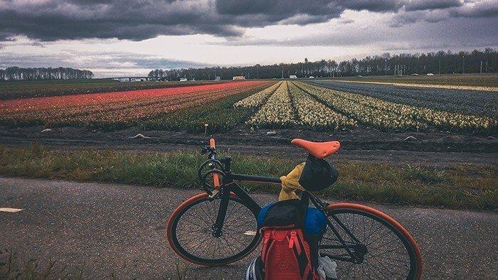 tulipani olanda ciclabili olanda cicloturismo viaggiare in bicicletta viaggio in solitaria amsterdam Keukenhof