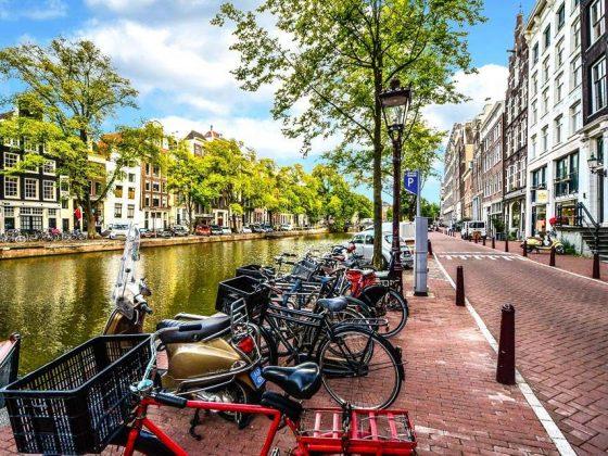 cinque fatti sul ciclismo in olanda